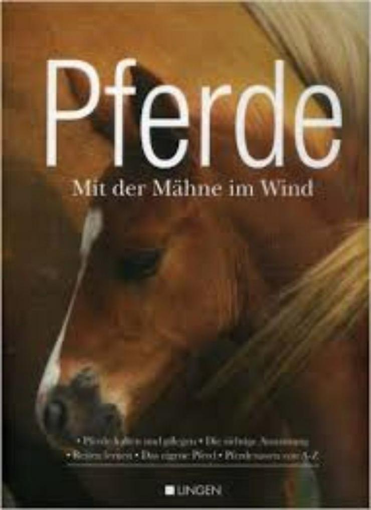 Buch (Neu) Mit der Mähne im Wind (FP)