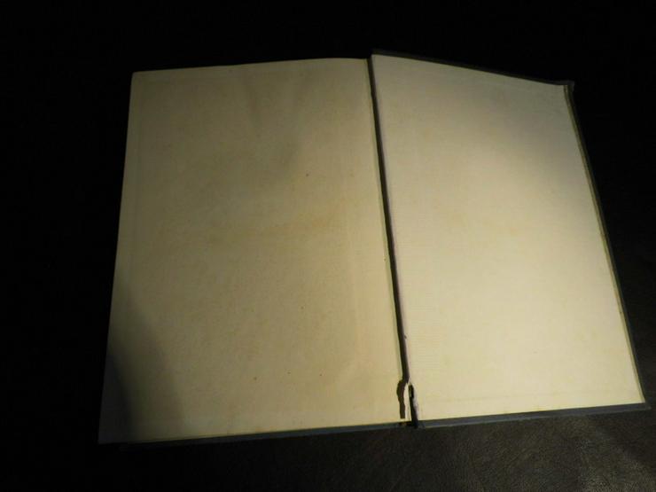 Bild 9: Antikes Kochbuch Henriette Davidis 1932, Prakt