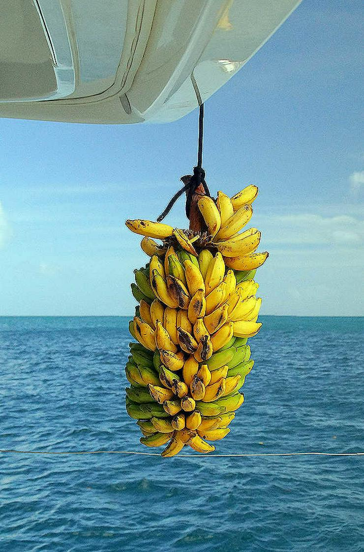 Bild 12: Segeln im Traumrevier Seychellen auf Katamaran