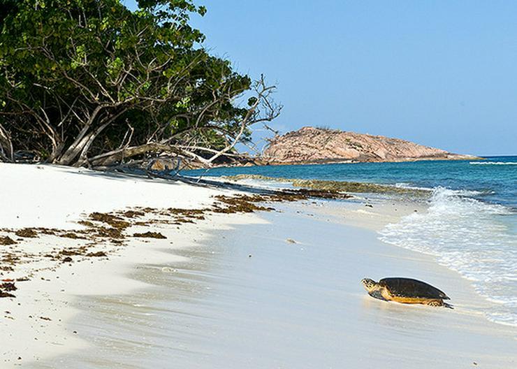 Bild 4: Segeln im Traumrevier Seychellen auf Katamaran