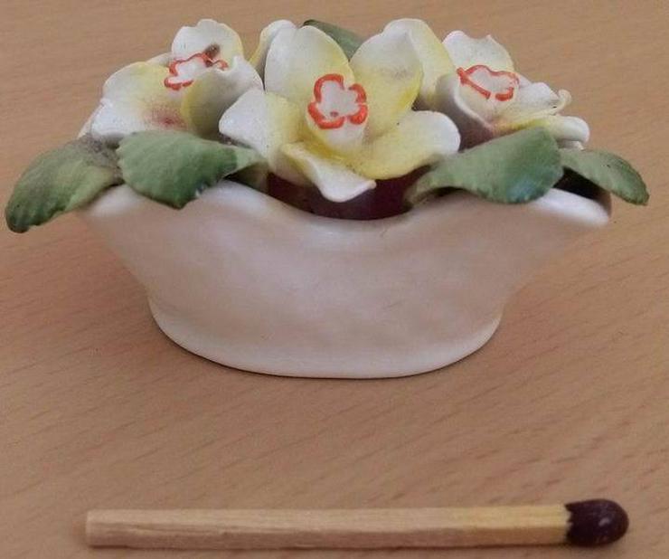 Healacraft March (flower bouquet)