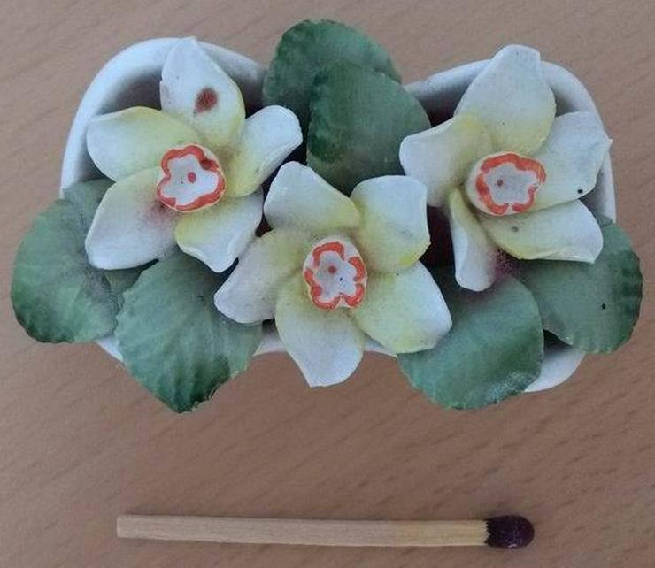 Bild 2: Healacraft March (flower bouquet)
