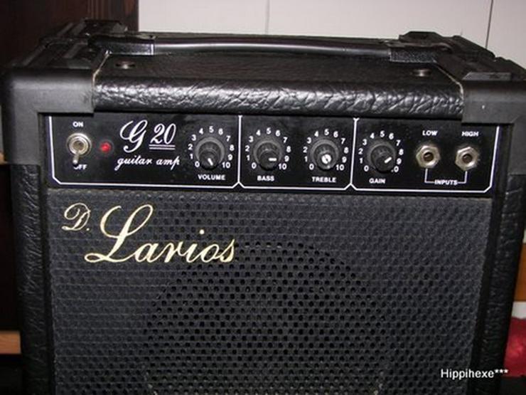 Bild 4: Gitarrenverstärker D. Larios G20