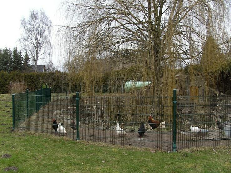 Bild 3: Baugrundstück zwischen zwei Seen nahe Rostock-Laage!