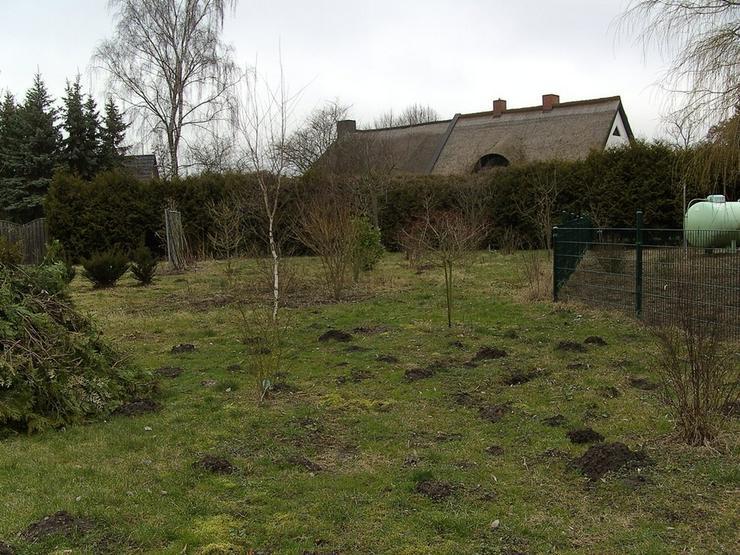 Bild 2: Baugrundstück zwischen zwei Seen nahe Rostock-Laage!