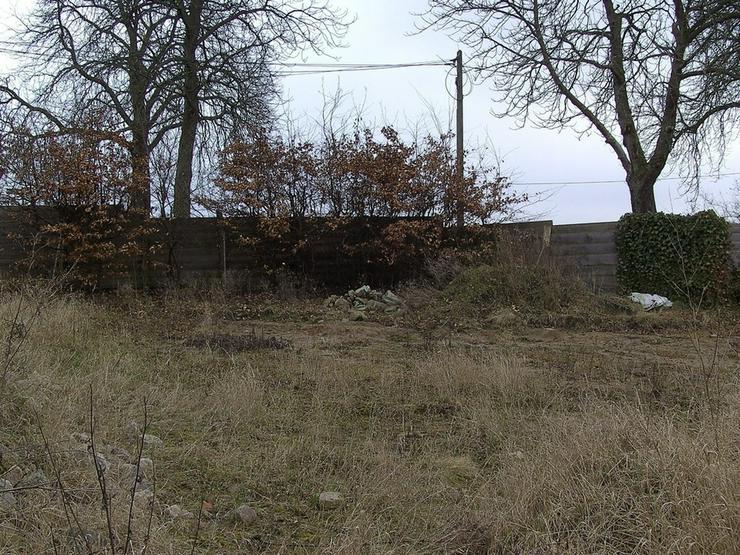 Bild 6: Baugrundstück in ländlicher Lage ...