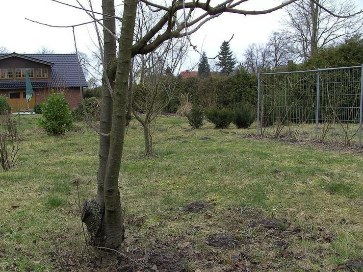 Bild 4: Baugrundstück in ländlicher Lage ...