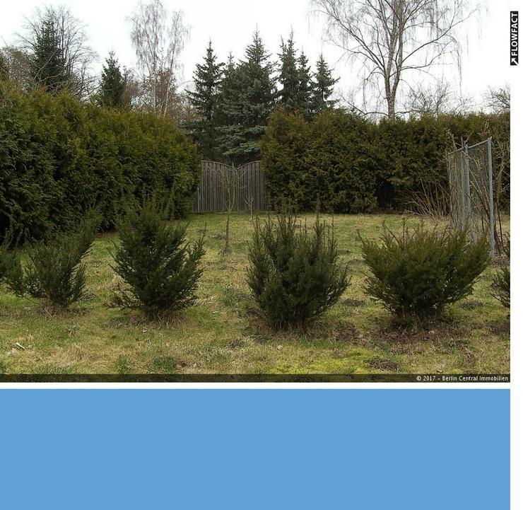 Baugrundstück in ländlicher Lage ... - Grundstück kaufen - Bild 1