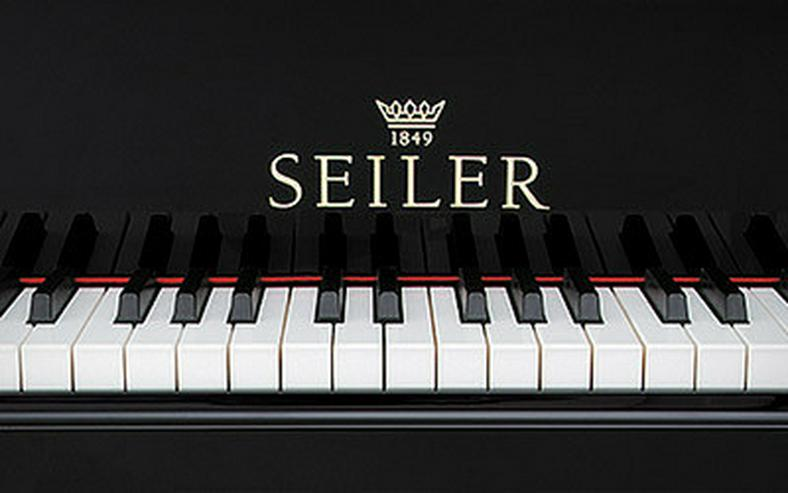 Bild 5: Johannes Seiler Klavier 110 Modern