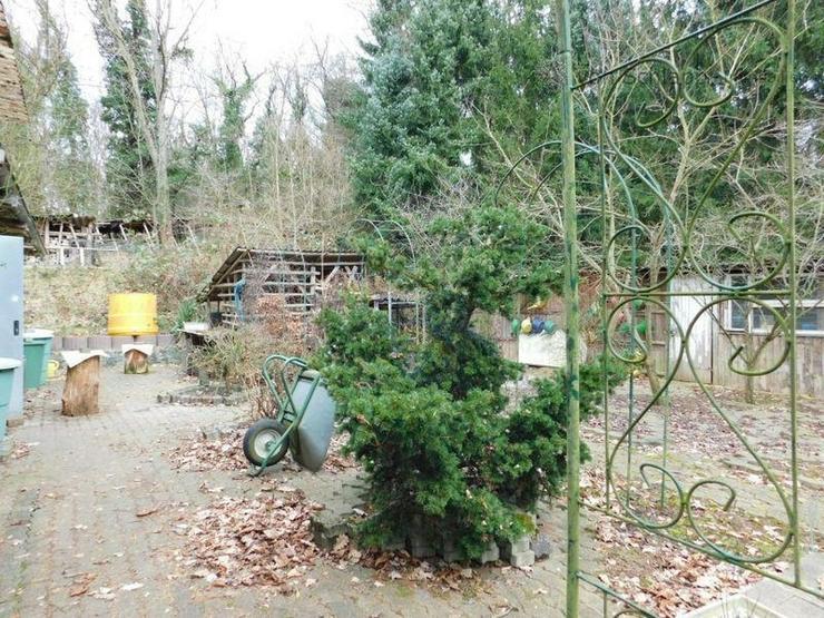 Bild 3: NIDDA: Traumhaftes Baugrundstück mit Haus zum Herrichten!