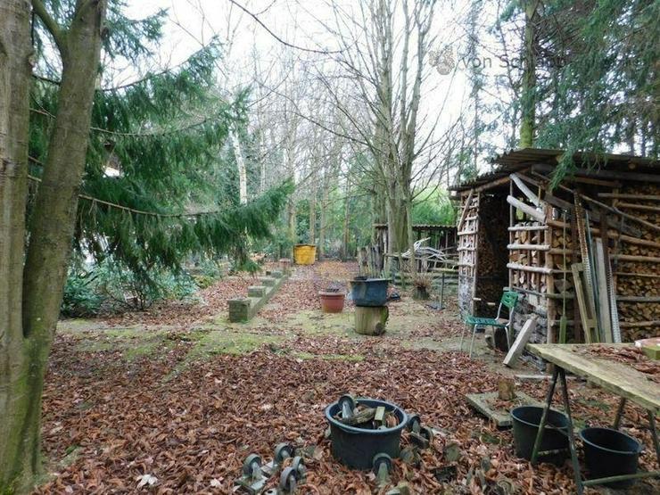 Bild 5: NIDDA: Traumhaftes Baugrundstück mit Haus zum Herrichten!