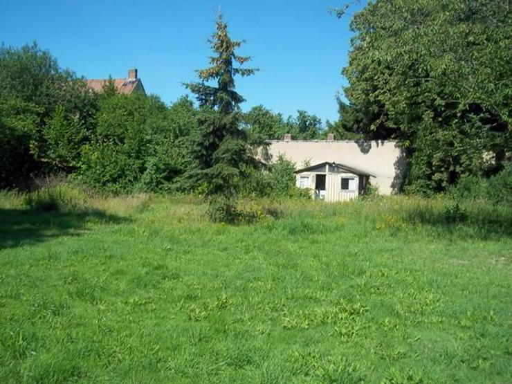 Bild 2: Villa im Landhausstil der Kurbäder mit großem Grundstück