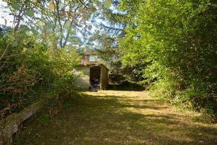Bild 4: Herrlich gelegenes Einfamilienhaus mit Terrasse, Garten und tollem Ausblick