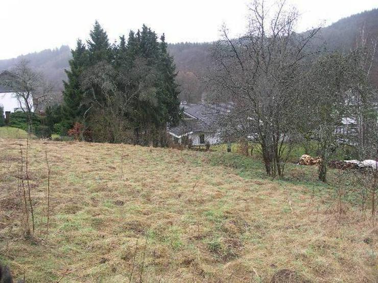 In Feriengebiet Schleiden gelegene Baugrundstücke ab sofort zu verkaufen - Grundstück kaufen - Bild 1