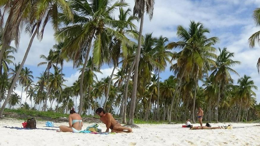 Bild 2: Ausflug Isla Saona Punta Cana, Bavaro