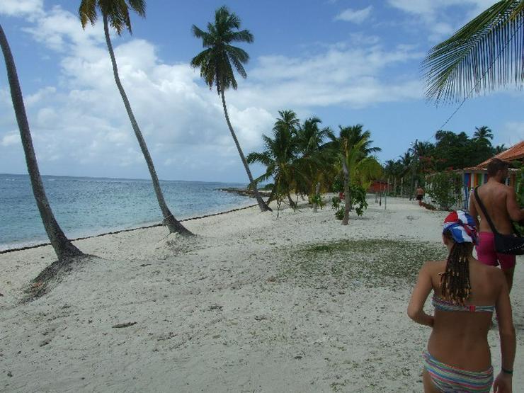 Bild 6: Ausflug Isla Saona Punta Cana, Bavaro