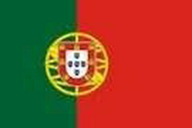 Portugiesisch via Skype