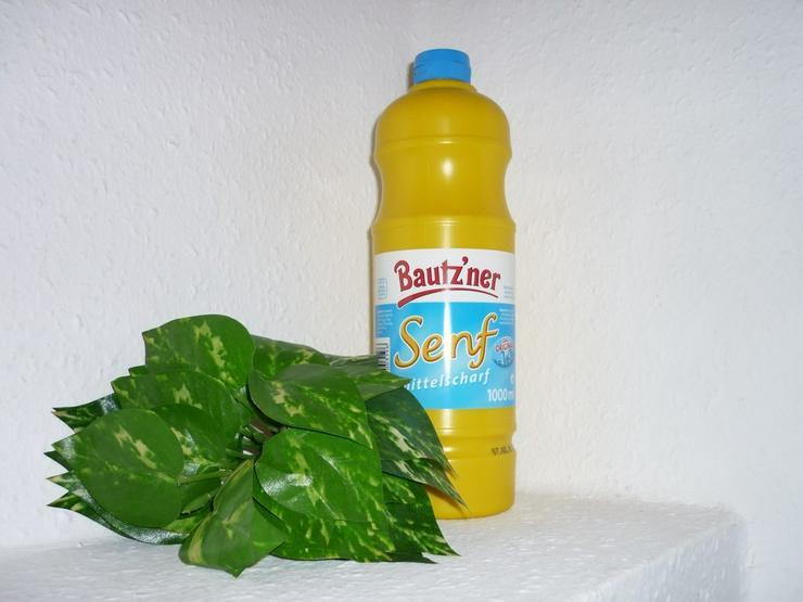Bild 4: Bautzner mittelscharfer Senf  300 ml Quetschfl.