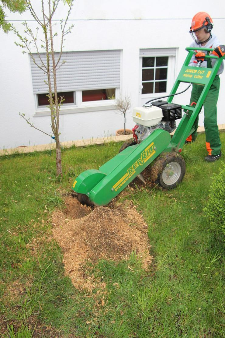 Baumstumpffräsen Wurzelfräsen Gartenpflege - Gartenarbeiten - Bild 1