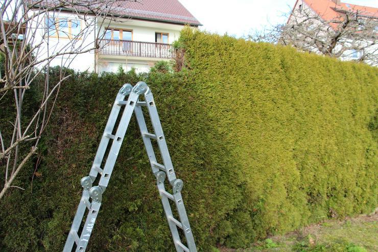 Bild 2: Baumstumpffräsen Wurzelfräsen Gartenpflege