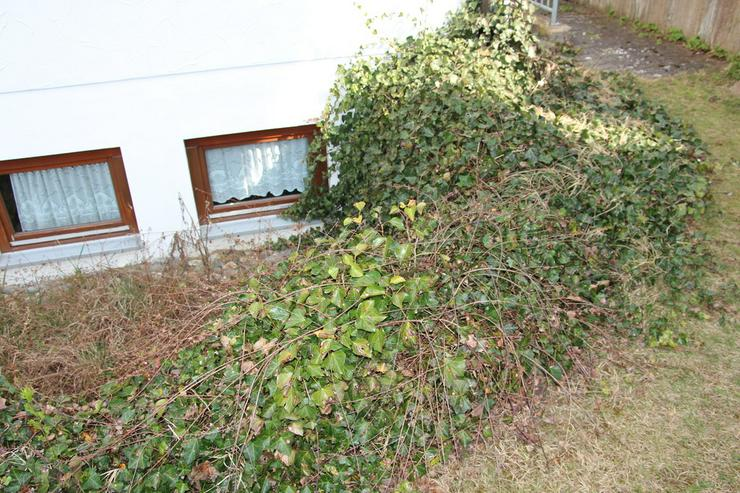 Bild 3: Baumstumpffräsen Wurzelfräsen Gartenpflege