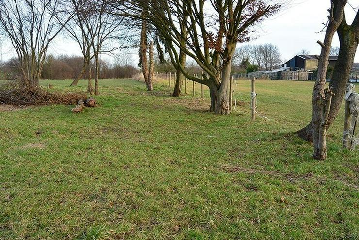 Bild 3: Geilenkirchen-Gillrath: Einfamilienhaus 3 ZiKDB mit großem Grundstück/Garten