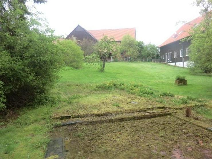Bild 2: Ein Traum Anwesen möchte aus dem Dornröschenschlaf erwacht werden