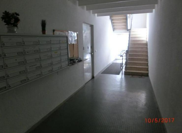 Lichtdurchflutete 3 Zimmer Wohnung im Herzen von Ludwigshafen