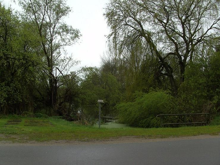 Bild 5: unweit vom Schaalsee...
