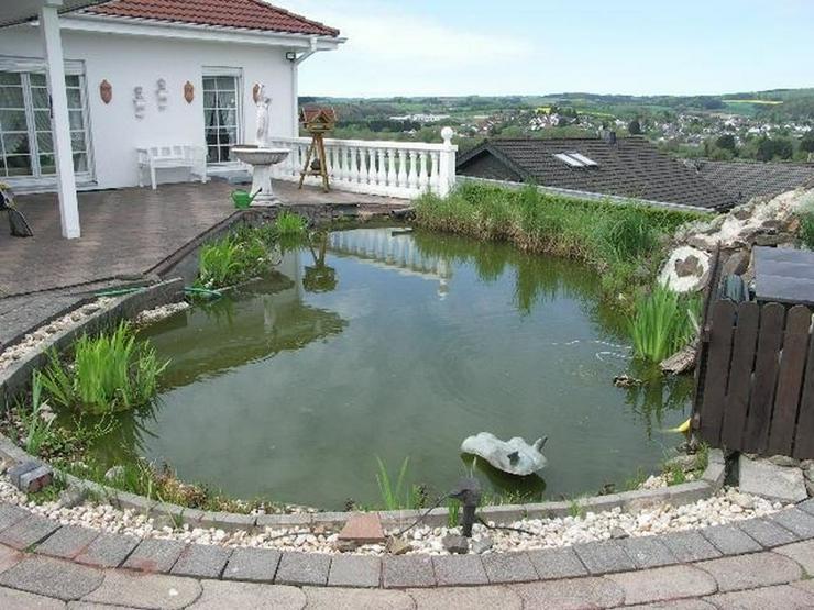 Birgel Vulkaneifel: EFH mit Einliegerwohnung 9 Zimmer Sauna Garten mit Biotop Garage Campe... - Gewerbeimmobilie kaufen - Bild 1