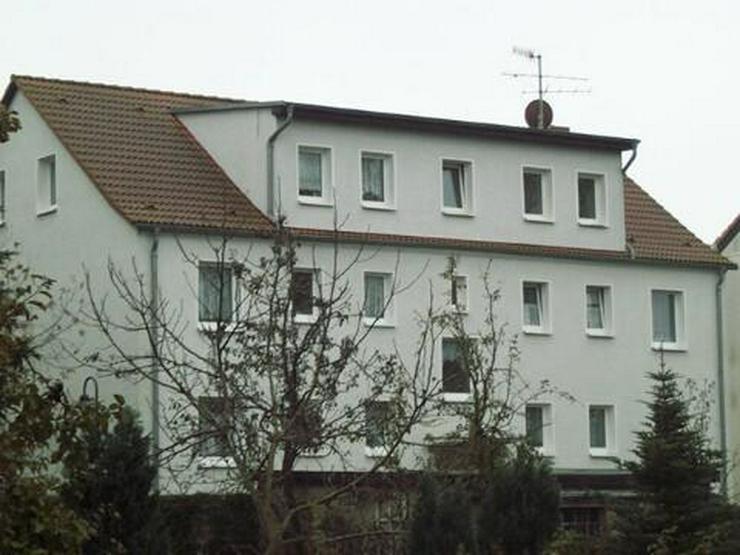 3 RWHG SANIERT | VERMIETER ERLEDIGT DEN UMZUG | NATUR SOWEIT DAS AUGE BLICKT | IM SOLIDEN ... - Wohnung mieten - Bild 1