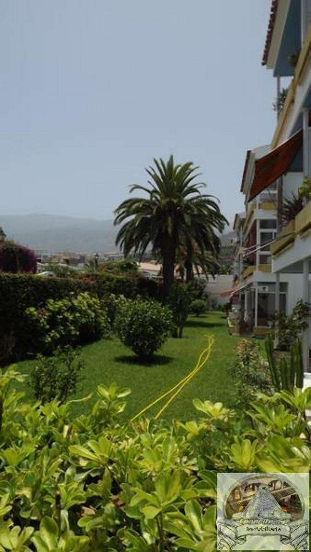 Bild 3: Apartment in Las Adelfas, Puerto de la Cruz