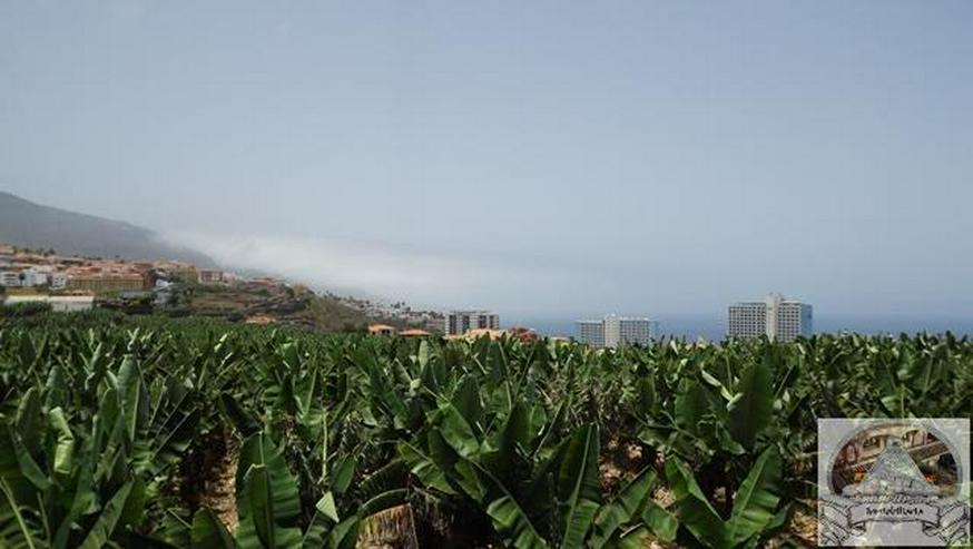 Bild 4: Apartment in Las Adelfas, Puerto de la Cruz