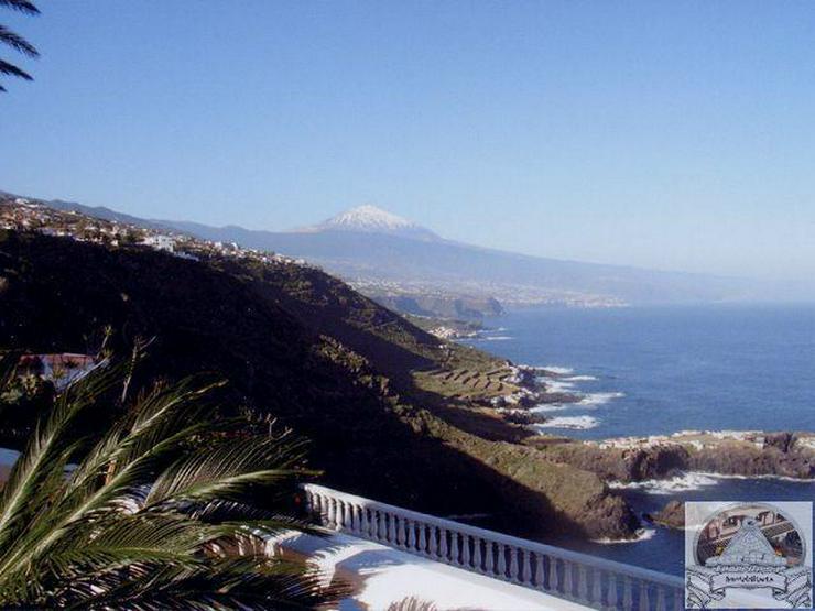 Bild 6: Super Süd-/ Westlage direkt an der Steilküste