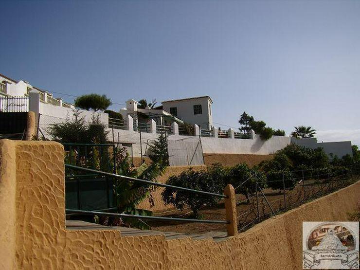 Bild 2: Finca mit Pool in ruhiger Lage von Arafo