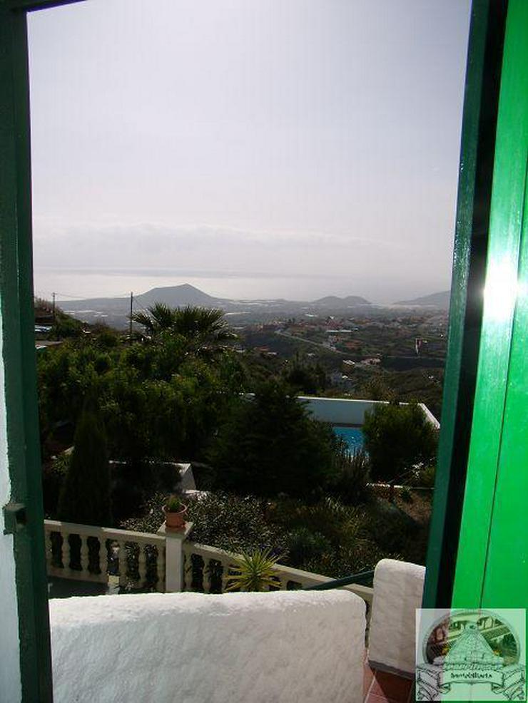 Bild 3: Finca mit Pool in ruhiger Lage von Arafo