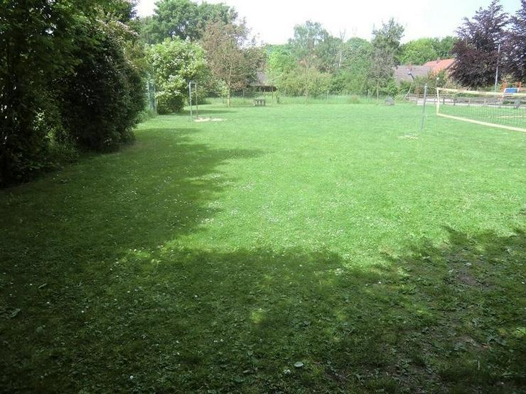 Bild 3: Ein sonnengeflutetes Grundstück - viele Möglichkeiten