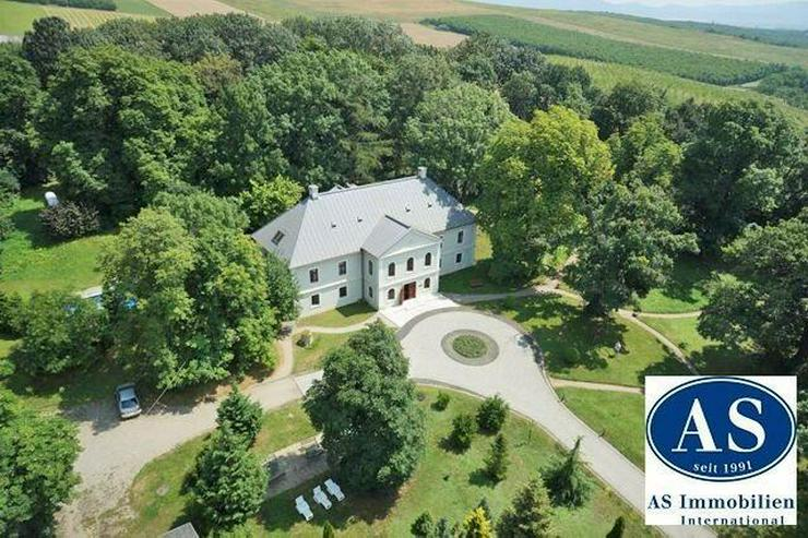 Schloss (Hotel) mit Pferdestall auf 35000 qm Land zu verkaufen! - Auslandsimmobilien - Bild 1