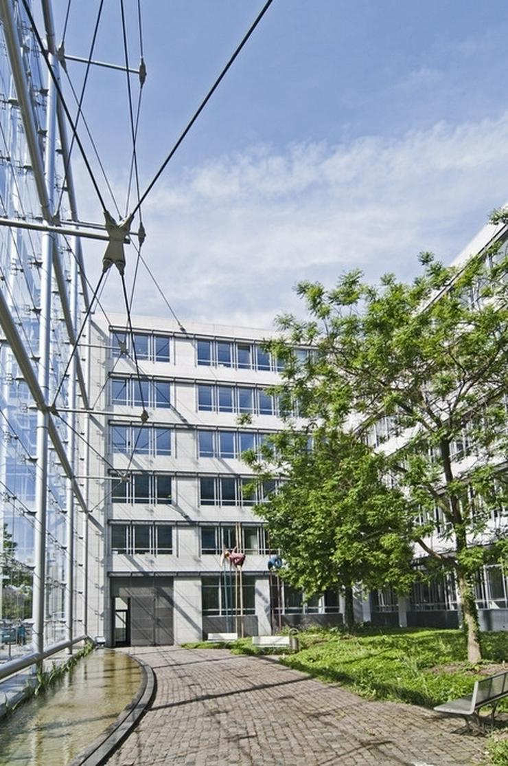 Bild 3: Provisionsfrei: Privatbüro/s - Top Lage - Dachterrasse - Mietzeitraum ab 1 Monat