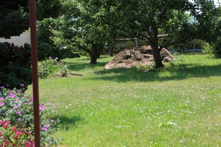 Wunderschönes Kleines EFH in ruhiger Lage von Elsterberg auf 770 m² Grundstück - von Sc...