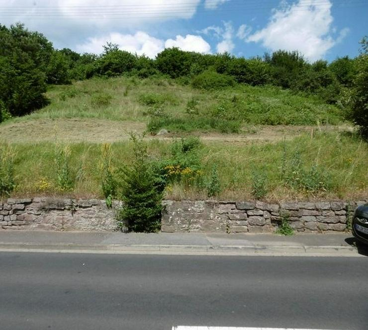 Bild 3: Großes Grundstück mit Blick über das Maintal - von Schlapp Immobilien