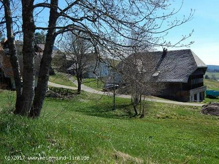 Bild 2: Hier ist Platz für Ihr Traumhaus!