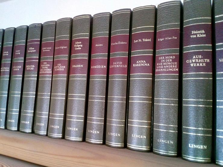 Bild 2: Bibliotek der Klassiker