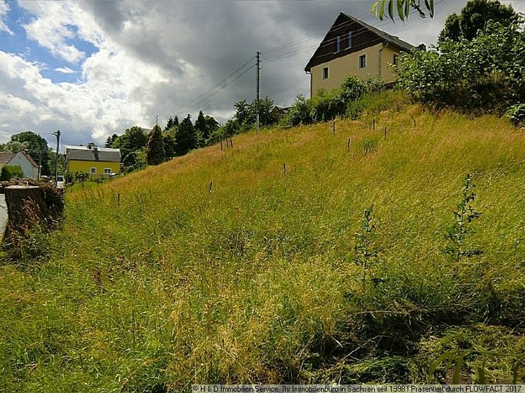 Bild 2: Baulücke in Paulsdorf gesucht ?