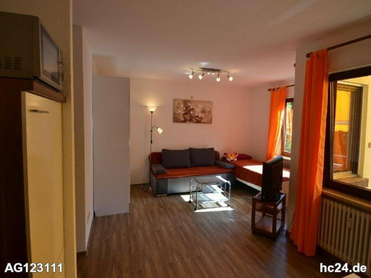 Bild 4: Möbliertes Apartment in Bad Bellingen
