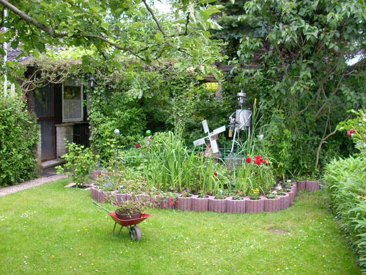 Gartenpflege und Hausmeisterdienst - Gartenarbeiten - Bild 1