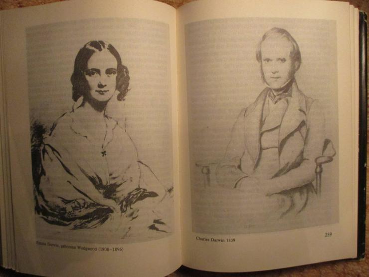 Bild 4: Charles Darwin-Biografie