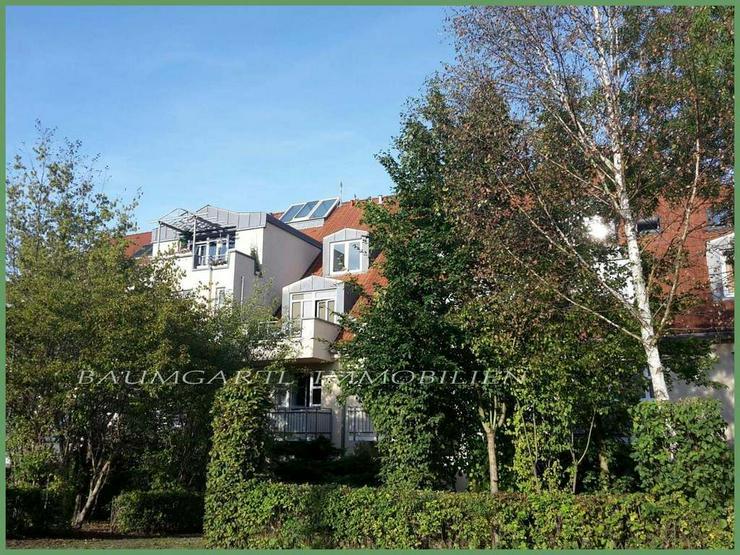Dresden-Weißig - 2 Zimmer mit Terrasse und Gartenanteil, sowie Tiefgaragenstellplatz zu v... - Bild 1