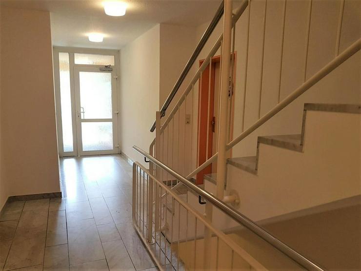 Bild 3: Dresden-Weißig - 2 Zimmer mit Terrasse und Gartenanteil, sowie Tiefgaragenstellplatz zu v...