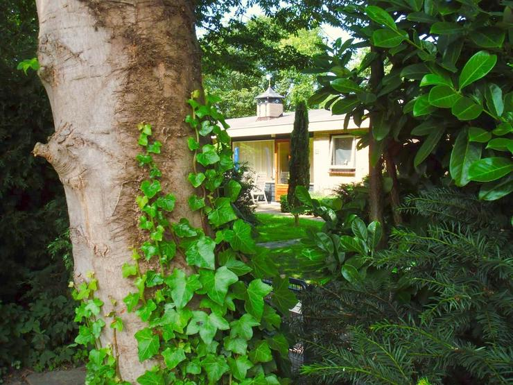 Bild 3: 4-P. Ferienhaus in Zeeland bei Domburg, strandnäh.